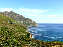 4. SOUTH AFRICA DELIVERS A RELAXED SOAKING BEACH VACATION/OCEANS AND MARINE LIFE